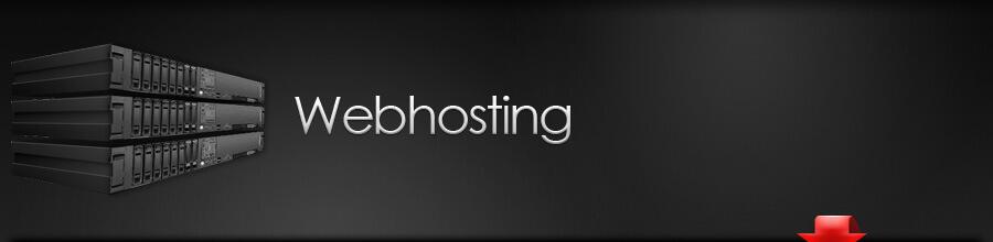 hosting nedir ?