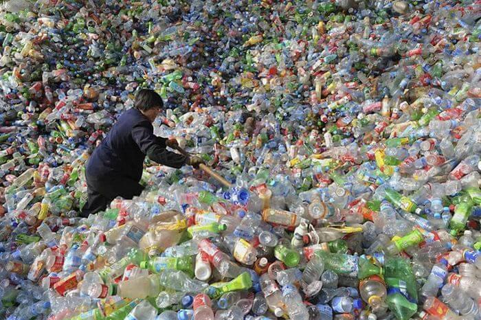 Photo of Bilim adamları plastik yiyen yeni bir bakteri çeşidi buldu